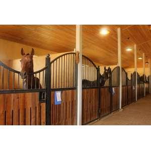 Вольеры для лошадей в СПб
